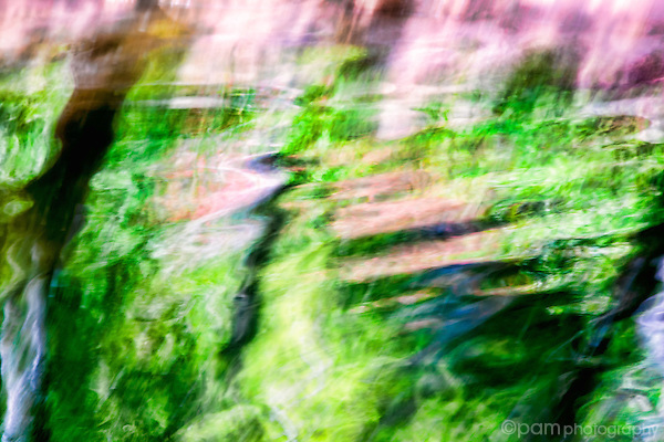 Colorful water abstract with an impressionistic quality