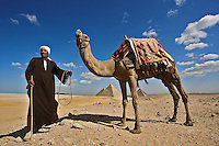 Egyptian man with camel in front of the Pyramids of Giza, Chafre, Chepren, and Menkaure Pyramids with Cairo in distant background, Egypt