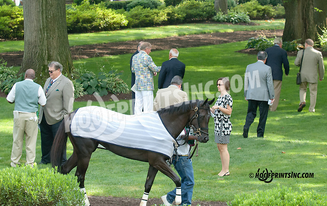 Defy Gravity before The Sweet and Sassy Stakes at Delaware Park on 7/20/13