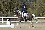 Class 5. British dressage. Brook Farm Training Centre. Essex. UK. 02/03/2019. ~ MANDATORY Credit Garry Bowden/Sportinpictures - NO UNAUTHORISED USE - 07837 394578