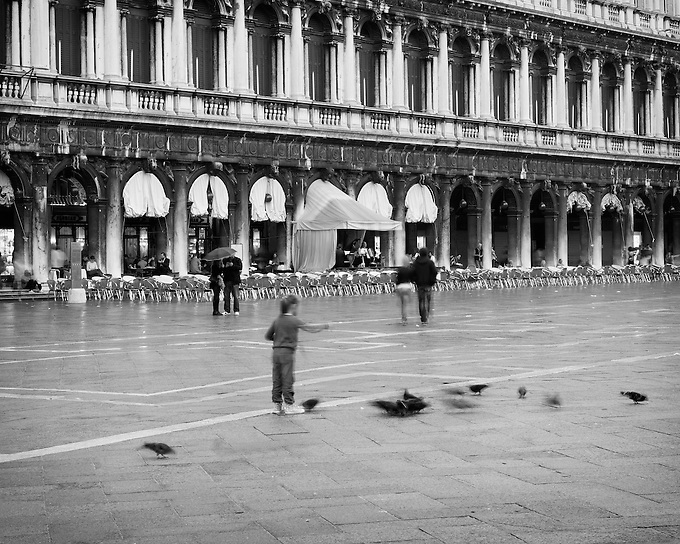 A child feeding pigeons during rainfall in St. Mark's Square, Venice.
