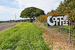 Hand painted signs in the Ka'u district of the Big Island of Hawaii advertising small coffee farms dot the main Highway 11 on the roads around the village of Pahala