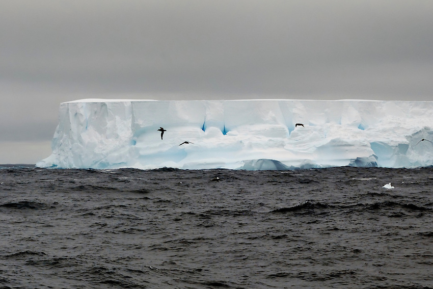Holes in the wall - Iceberg in the Southern Ocean