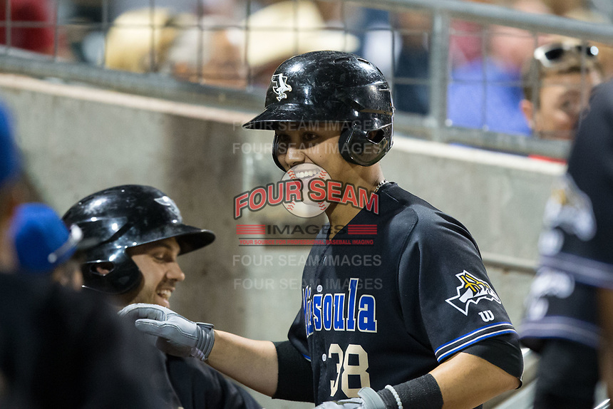 Andy Yerzy (38) of the Missoula Osprey is all smiles as he returns to the dugout after hitting a home run against the Billings Mustangs at Dehler Park on August 21, 2017 in Billings, Montana.  The Osprey defeated the Mustangs 10-4.  (Brian Westerholt/Four Seam Images)