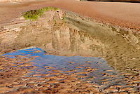 Colorado River reflections<br />