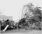 Category 5 Hurricane WIlma brought destruction all over Miami and Miami Beach. At one point while in the Atlantic Basin it was the strongest hurricane ever recorded. Five people were killed by the storm in the US alone and over 60 total.