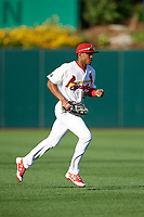 Springfield Cardinals left fielder Magneuris Sierra (29) jogs to the dugout during a game against the Corpus Christi Hooks on May 30, 2017 at Hammons Field in Springfield, Missouri.  Springfield defeated Corpus Christi 4-3.  (Mike Janes/Four Seam Images)
