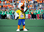 The Hague, Netherlands, June 15: The mascot of the World Cup Stockey performs  before the prize giving ceremony on June 15, 2014 during the World Cup 2014 at Kyocera Stadium in The Hague, Netherlands. (Photo by Dirk Markgraf / www.265-images.com) *** Local caption ***