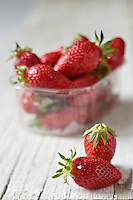 Europe/France/Aquitaine/47/Lot-et-Garonne: Fraise Gariguette