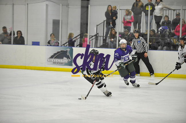 Stevenson women's ice hockey shut out the Cougars of Chatham as they took a 5-0 victory Saturday evening at the Reisterstown Sportsplex.