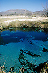 Deep blue water at Crystal Spring, Ash Meadows National Wildlife Refuge, Nevada.