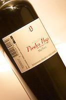 A bottle of Piedra Negra Malbec Special Reserve Bodega Jacques and Francois Lurton Mendoza Valle de Uco The Dolly Irigoyen - famous chef and TV presenter - private restaurant, Buenos Aires Argentina, South America Espacio Dolli