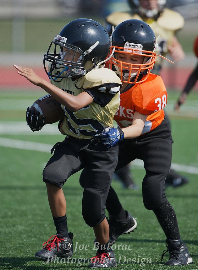 North Langley Bears vs Royal City Hyacks Atom Golden Helmet Tounament