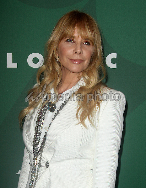 14 October 2016 - Beverly Hills, California - Rosanna Arquette. Variety's Annual Power of Women Luncheon held at the Beverly Wilshire Hotel in Beverly Hills. Photo Credit: AdMedia