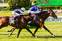 NEW YORKT, NY - JUNE 09  Red Cardinal (IRE), #10, with Eduardo Pedroza, holds off St Michael, #13, to win the Belmont Gold Cup Invitational on June 9, 2017 in Elmont, New York.(Photo by Sue Kawczynski/Eclipse Sportswire/Getty Images)