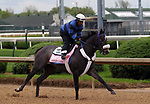 April 26, 2019 : Restless Rider works out at Churchill Downs, Louisville, Kentucky, preparing for a start in the Kentucky Oaks. Owner Fern Circle Stables and Three Chimneys Farm LLC, trainer Kenneth G. McPeek. By Distorted Humor x Silky Serenade (Unbridled's Song) Mary M. Meek/ESW/CSM