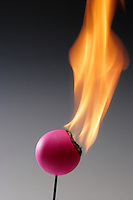 CELLULOID PING PONG BALL BURNS RAPIDLY<br /> Nitrocellulose Products Are Highly Inflammable<br /> Cellulose mononitrate, cellulose dinitrate, and cellulose trinitrate are the forms of nitrocellulose, one of the first man made polymers. Because it was so unstable, camphor was added to amend the problem of detonation.