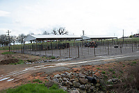 Research Cattle Pens