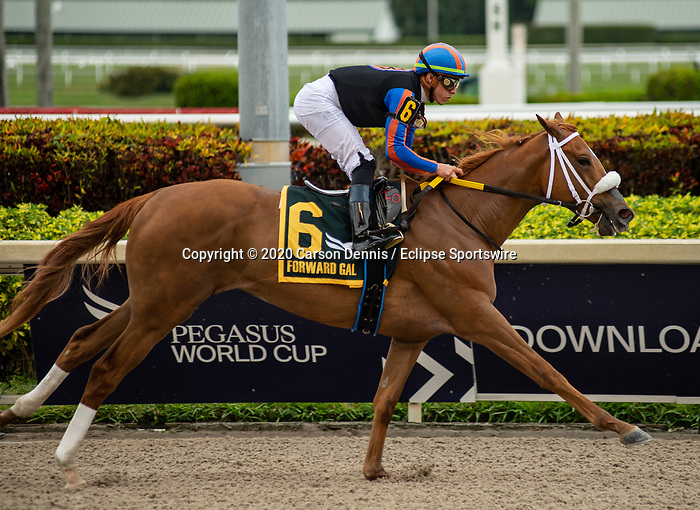 February 1, 2020: #6, Tonalist's Shape makes it look easy under Irad Ortiz Jr. for Trainer Saffie A. Joseph Jr. in the Forward Gal Stakes at Gulfstream Park on February 1, 2020 in Hallandale Beach, FL. (Photo by Carson Dennis/Eclipse Sportswire/CSM)