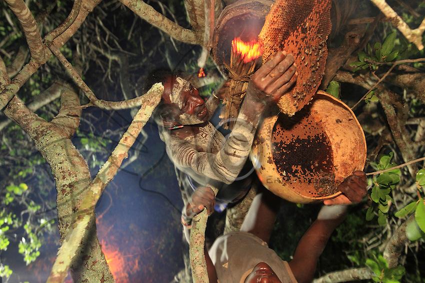 In the middle of the night, the harvesting of a hive takes on the air of a sacrificial ceremony.///En pleine nuit, la récolte d'une ruche prend des allures de cérémonies sacrificielles.