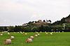 Blick über Felder auf den Hügel von Neu-Bamberg mit der Burgruine der Höhenburg Neu Baumburg (13. Jh) und die kath. Kirche St. Dionysius