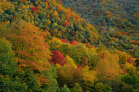 Oconaluftee River Valley<br />