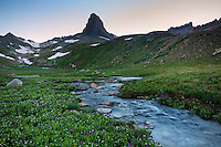 Golden Horn peak ( 13780 ft) rises above creek in Ice Lakes Basin, San Juan mountains, Colorado, USA