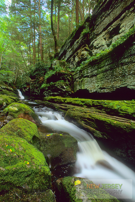 Flatbrook Waterfall, Delaware Water Gap, New Jersey