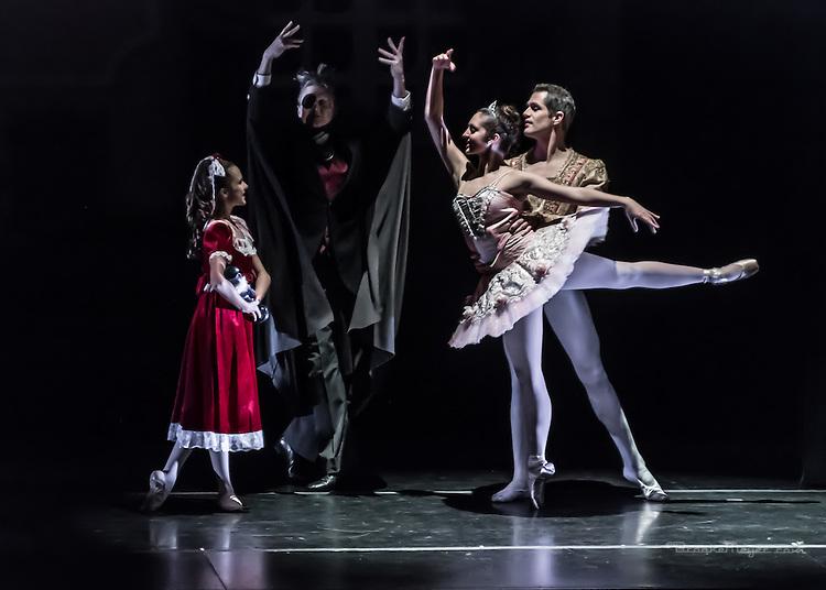 """Cary Ballet Company, """"Visions of Sugarplums"""", Friday, 19 Dec. 2014, Cary Arts Center, Cary, North Carolina."""