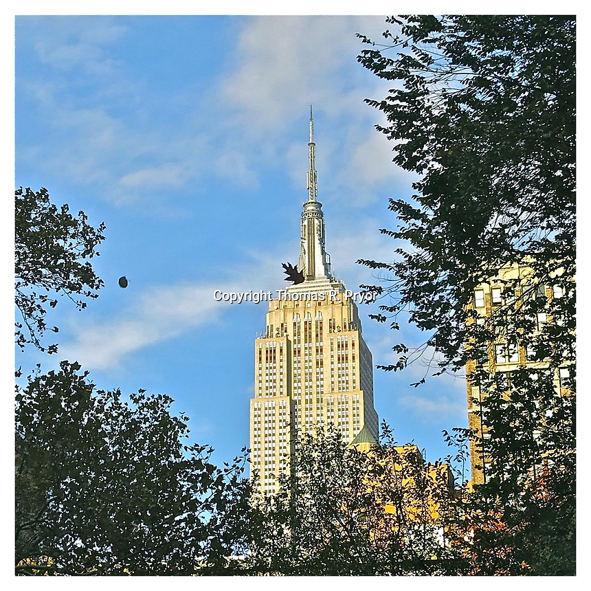 NEW YORK, NY - NOVEMBER 12: Leaves falling against the Empire State Building from Madison Square Park in New York, New York on November 12, 2012. Photo Credit: Thomas R Pryor