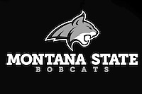 MSU Bobcats logo and marks unveiled...