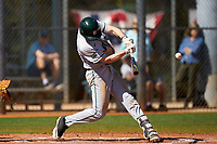 Dartmouth Big Green Connor Bertsch (23) bats during a game against the Omaha Mavericks on February 23, 2020 at North Charlotte Regional Park in Port Charlotte, Florida.  Dartmouth defeated Omaha 8-1.  (Mike Janes/Four Seam Images)