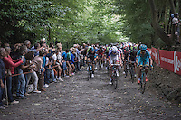 the peloton hits the iconic Muur van Geraardsbergen (1100m/7.6%)<br /> <br /> <br /> 12th Eneco Tour 2016 (UCI World Tour)<br /> Stage 7: Bornem › Geraardsbergen (198km)