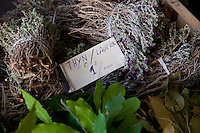 Wild thyme and bay leaves for sale at the Marché Provençal, Antibes, France, 26 April 2012
