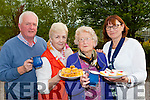 Liam Hickey, Noreen Griffin, Hannah Cronin, Caroline Hickey who held a tea party in aid of Alzeimers at her home in Ballyfinnane on Friday night