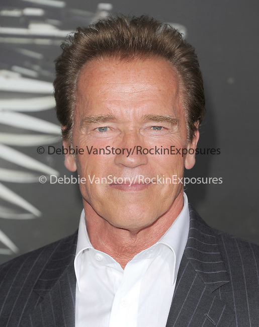 Arnold Scwarzenegger at Lionsgate World Premiere of The Expendables 2 held at The Grauman's Chinese Theatre in Hollywood, California on August 15,2012                                                                               © 2012 Hollywood Press Agency