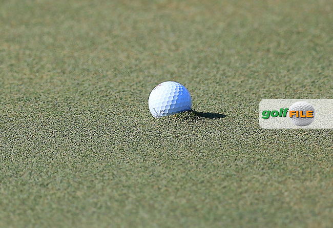 Jason Gore ball on the 18th pluged during round 1of the Players, TPC Sawgrass, Championship Way, Ponte Vedra Beach, FL 32082, USA. 12/05/2016.<br /> Picture: Golffile | Fran Caffrey<br /> <br /> <br /> All photo usage must carry mandatory copyright credit (&copy; Golffile | Fran Caffrey)