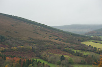 The Slieve Bloom Mountains on a cloudy autumn day, Ireland.