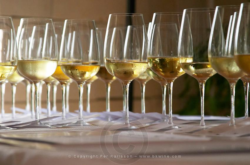 Wine tasting. Wine glasses. Chenin Blanc wines.