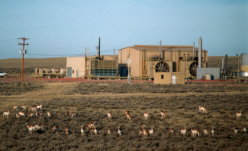 A herd of pronghorn antelope graze in front of one of hundreds of massive methane compressor stations scattered through Wyoming's Powder River Basin near Gillette. A boom in coal bed methane extraction has raised controversy in property rights and environmental issues.
