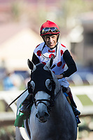 DEL MAR, CA - NOVEMBER 04: John Velazquez, aboard World Approval #5, smiles after his win during Breeders' Cup Mile on Day 2 of the 2017 Breeders' Cup World Championships at Del Mar Thoroughbred Club on November 4, 2017 in Del Mar, California. (Photo by Alex Evers/Eclipse Sportswire/Breeders Cup)
