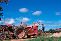 Filling the Hopper, David Adil, Adil's Farm, Mareeba, 2003.