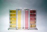SWIMMING POOL TEST KIT FOR pH & CHLORINE<br />
