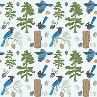 """""""Sierra Forest"""" is a hand illustrated scalable vector surface pattern inspired by Stellar's Jay birds found in Sierra Forest wilderness in western US.<br /> <br /> Suitable to print on various types of surfaces including fabric, wallpapers, stationery, home decor & lifestyle products.<br /> <br /> Contact for commercial/editorial/marketing collaboration for this design. Change requests for colors can be considered."""
