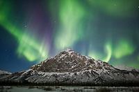 Aurora borealis over Mount Dillon, Brooks range, Arctic, Alaska.