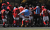 Chaminade players decide to hop over a fence in order to celebrate their 2-1 win over St. Anthony's in the Nassau-Suffolk CHSAA varsity boys soccer championship against St. Anthony's at Adelphi University on Sunday, Nov. 6, 2016.