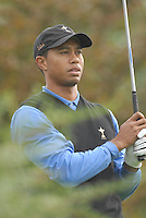 Ryder Cup 206 K Club, Straffin, Ireland...American Ryder Cup team player Tiger Woods on the fairway of the 4th hole during  the  morning fourballs session of the second day of the 2006 Ryder Cup at the K Club in Straffan, Co Kildare, in the Republic of Ireland, 23 September 2006...Photo: Eoin Clarke/ Newsfile.
