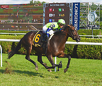 08-18-18 Lake Placid Stakes (II) Saratoga