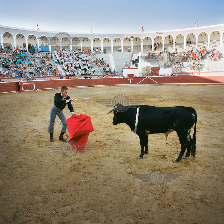 Ehausted from the fight, a bull stands motionless in front of the Matador who prepares to plunge his sword into the animal's heart.