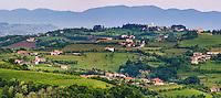 Vineyards in Goriska Brda, with Chiesa di San Floriano del Collio on top of the hill, Goriska Brda (Gorizia Hills), Slovenia, Europe
